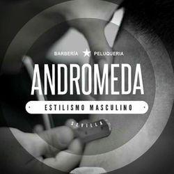 Andromeda, Avenida Ramón y Cajal, 124, 41005, Sevilla