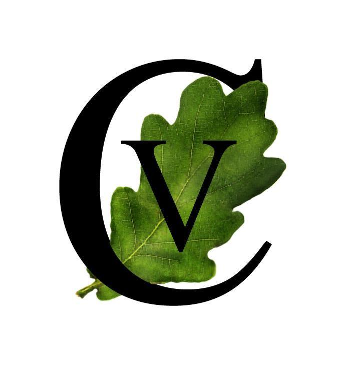 Consilium Vitalis