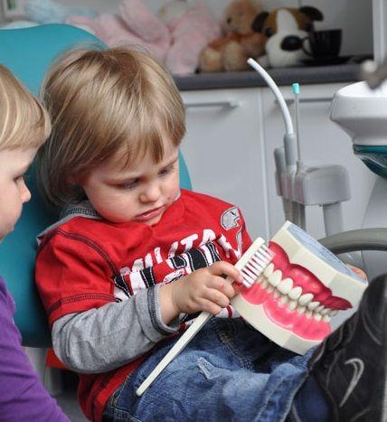 PT Dental