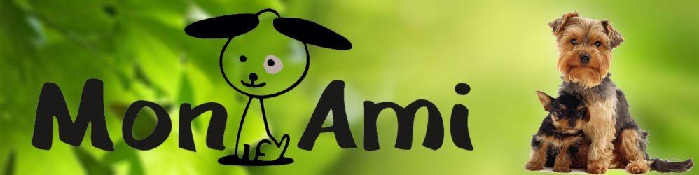 Mon Ami strzyżenie i pielęgnacja psów