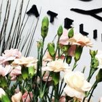 Dea Atelier Hair Factory