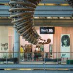 Akademia Urody Beverly Hills - Stary Browar