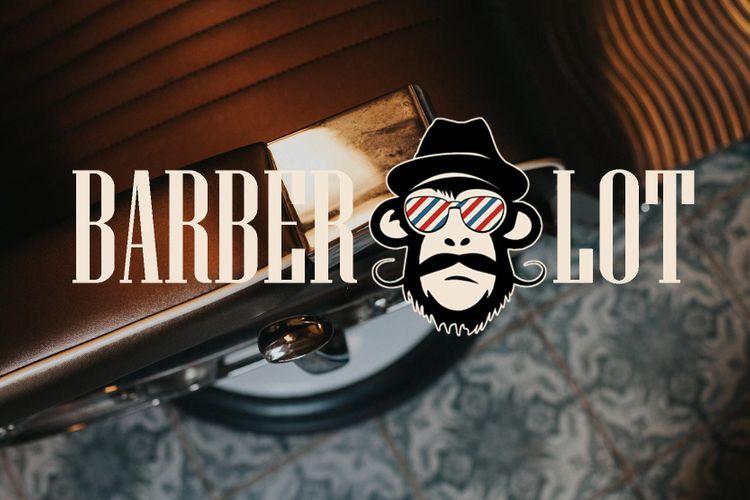 Barber Lot Batorego