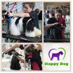 Happy Dog Gdańsk